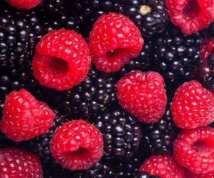 raspberry, healthy, and blackberry image
