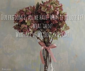 flower, freedom, and pink image