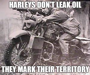 harley davidson, motorcycles, and flathead image