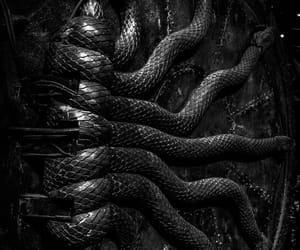 harry potter, snake, and aesthetic image