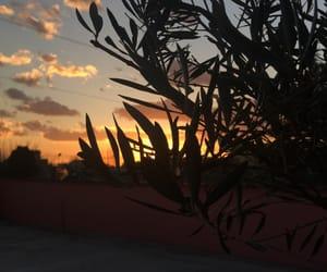 live, photo, and sunset image