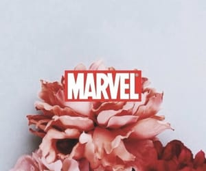 Marvel, movies, and series image
