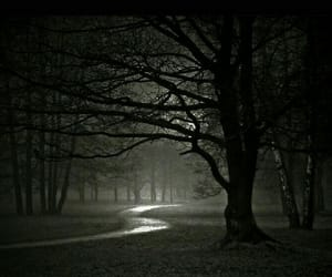 dark, mystery, and fantasy image