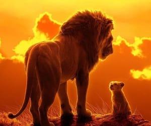 africa, animal, and disney image