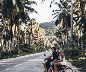 bloggers, coconut trees, and couple image