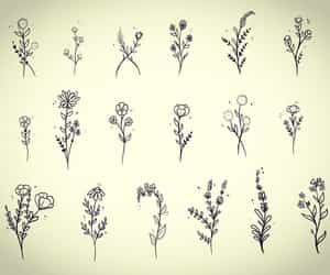 drawings, tattoo ideas, and flowers image