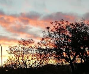 autumn, colors, and landscape image