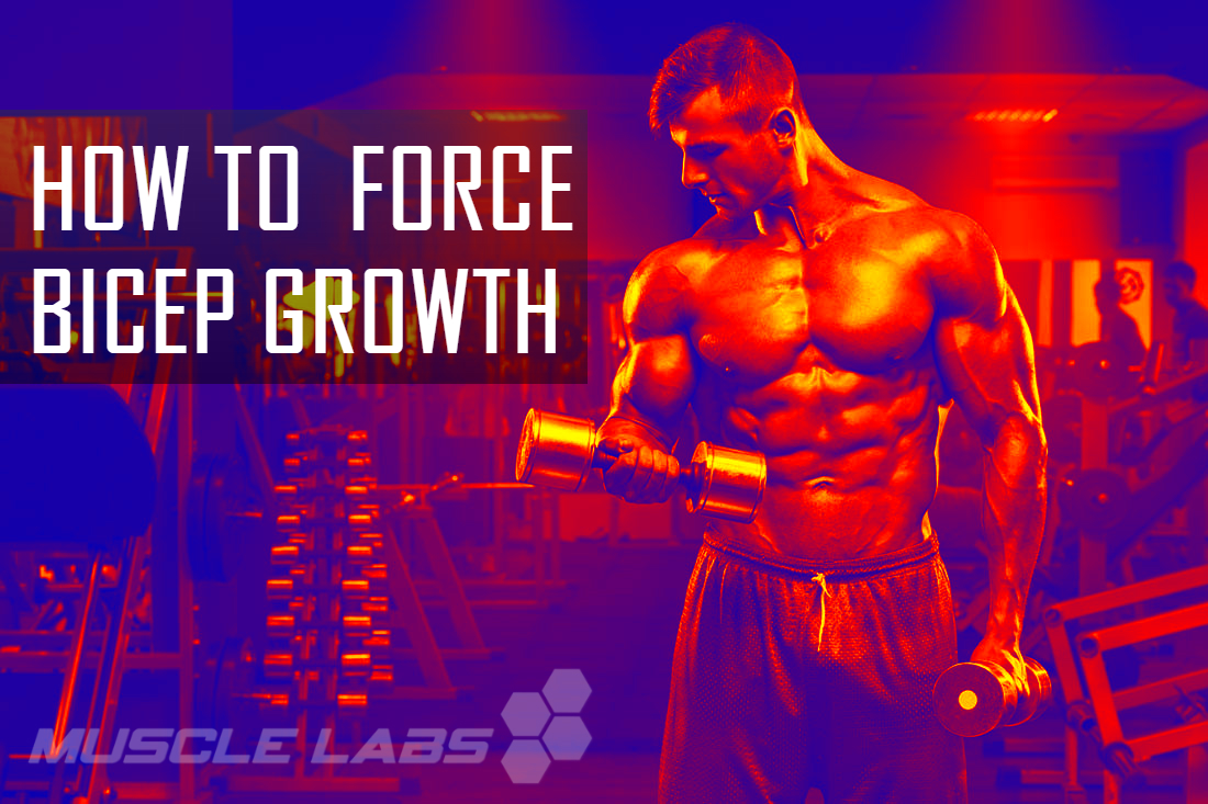 article, weightlifting, and bodybuilding image