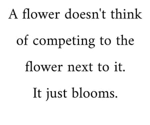 bloom, encouragement, and flower image