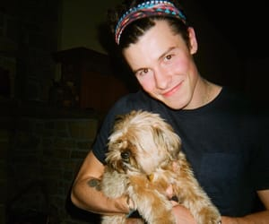 shawn mendes, boy, and dog image