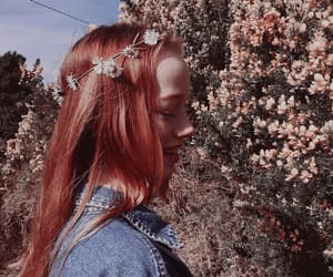 amybeth mcnulty and anne with an e image