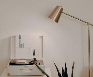 aesthetic, cactus, and lamp image