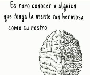 reflection, text, and frases image