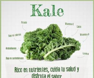 kale, pants, and vegetariano image