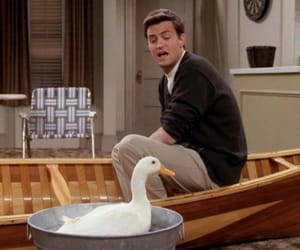 chandler, scene, and duck image