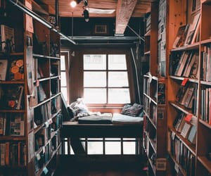 book, cozy, and library image