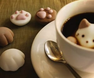 adorable, marshmallows, and pets image