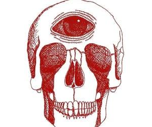 red, nonparlarmi.nontisento, and skull image