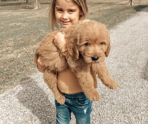 daughter, puppy, and love image