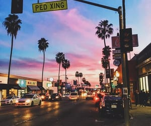 city, palm trees, and sky image