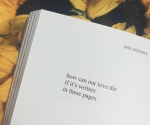 book, love, and milk and honey image