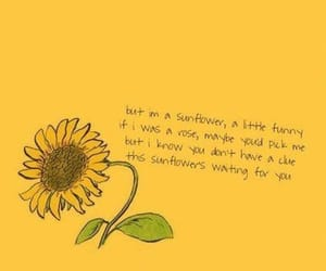 sunflower, yellow, and quote image