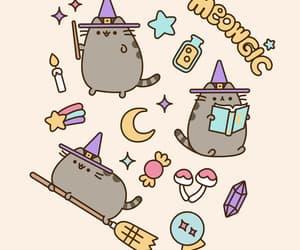 cat, gif, and magic image