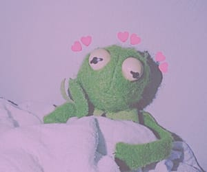 edit, frog, and heart image