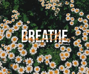 aesthetic, anxiety, and breathe image
