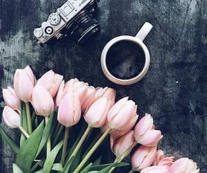 coffee, flowers, and camera image