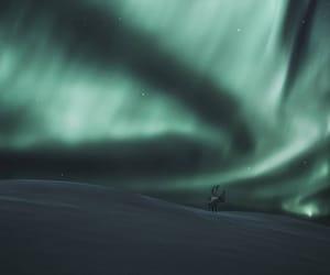 aurora borealis, night, and photography image