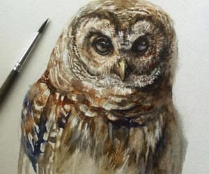 owl, watercolor, and galina ershova image
