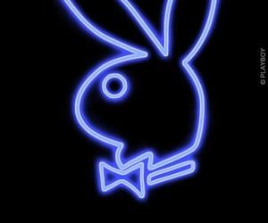 blue, Playboy, and rabbit image