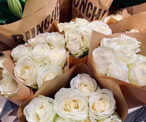 flowers, inspo, and white roses image