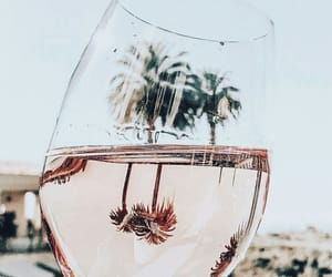 drink, wine, and summer image