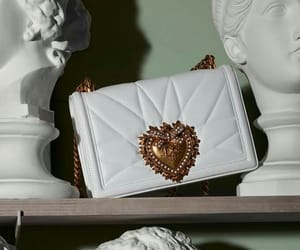 Blanc, D&G, and heart image