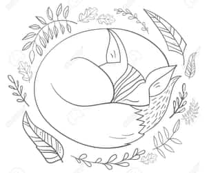 Animales, animals, and fox image