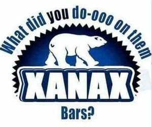 drugs, polarbear, and xanax image