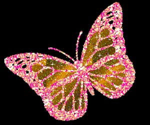 butterfly, glitter, and gif image