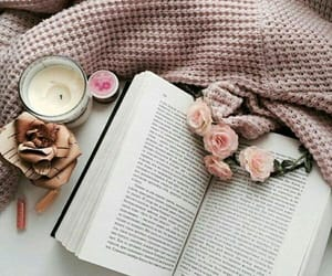 book, books, and lifestyle image