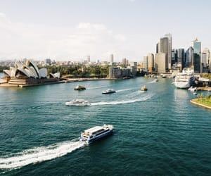 australia, boat, and Sydney image