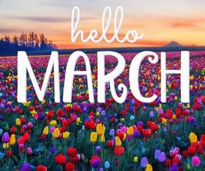 march, spring, and quotes image