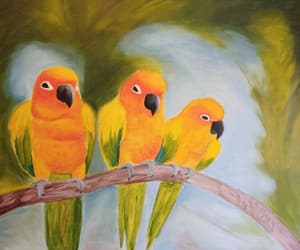 acrylic, art, and parrot image