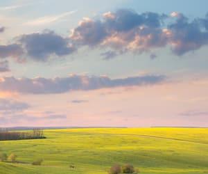 beautiful, colour, and inspiring image