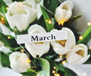 flowers, hello, and march image