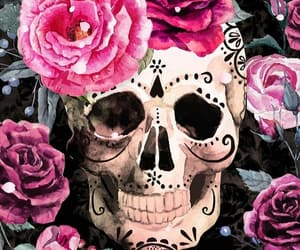 background, beautiful, and florals image