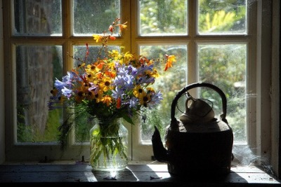 autumn, article, and flower image