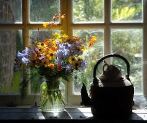 article, flowers, and garden image