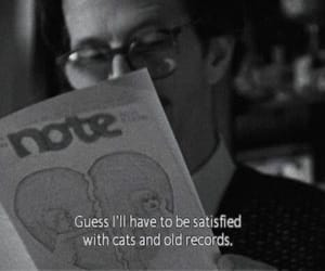 cat, quotes, and records image
