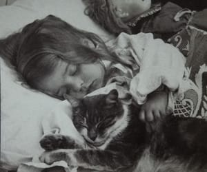 cat, child, and old photograph image